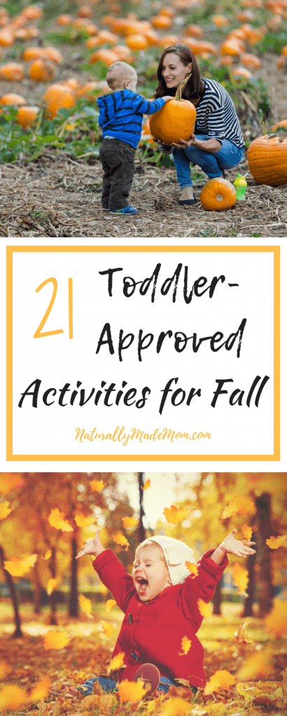 Get ready for the best season all year by planning out your favorite fall activities for toddlers. In this post we listed our 21 favorite fall activities to try with our kids. naturallymademom.com #fallactivitesfortoddlers